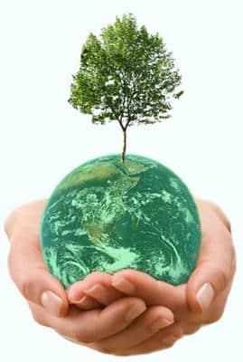 توسعه پاک در کامفار